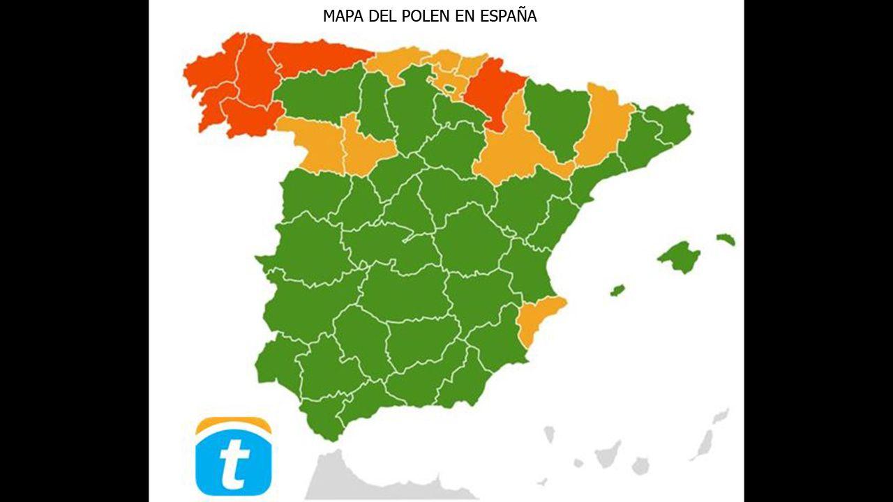 Mapa del polen en España