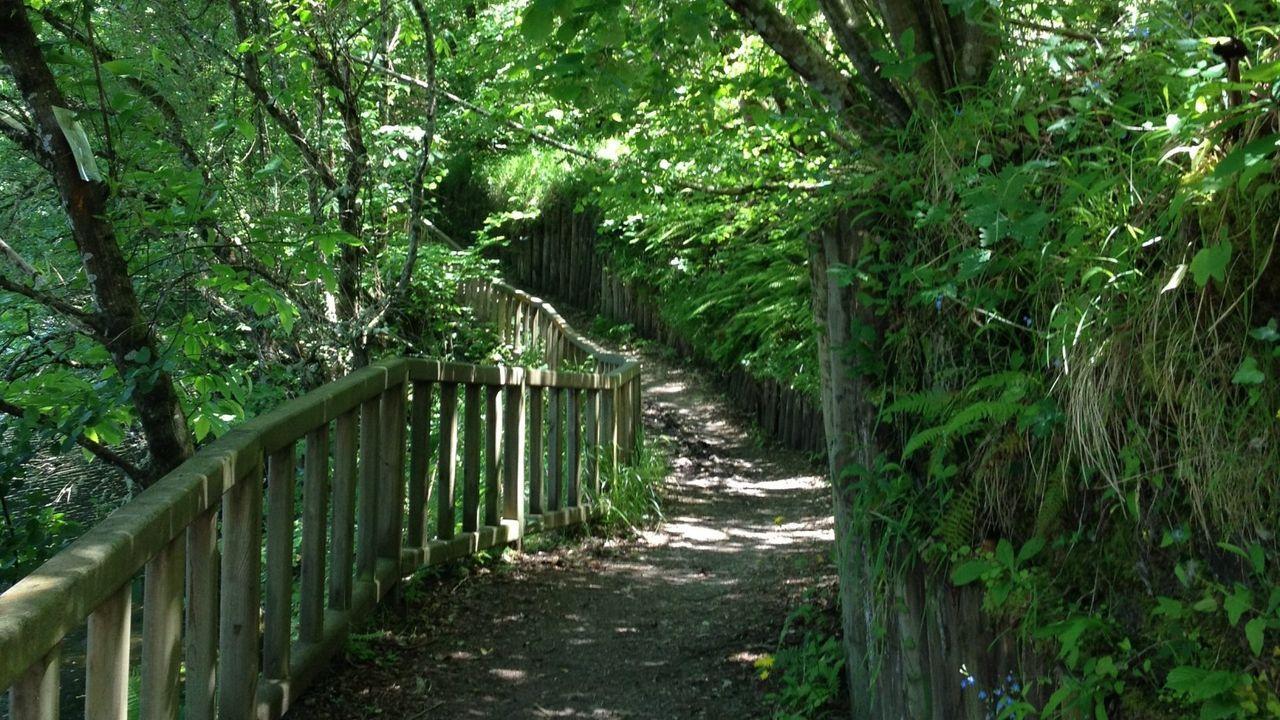 Ruta de Betanzos a Os Caneiros. Imagen de archivo