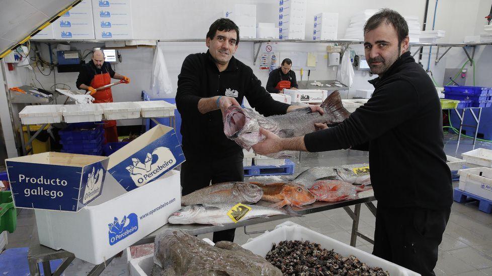 Las vacaciones de Rajoy en Galicia