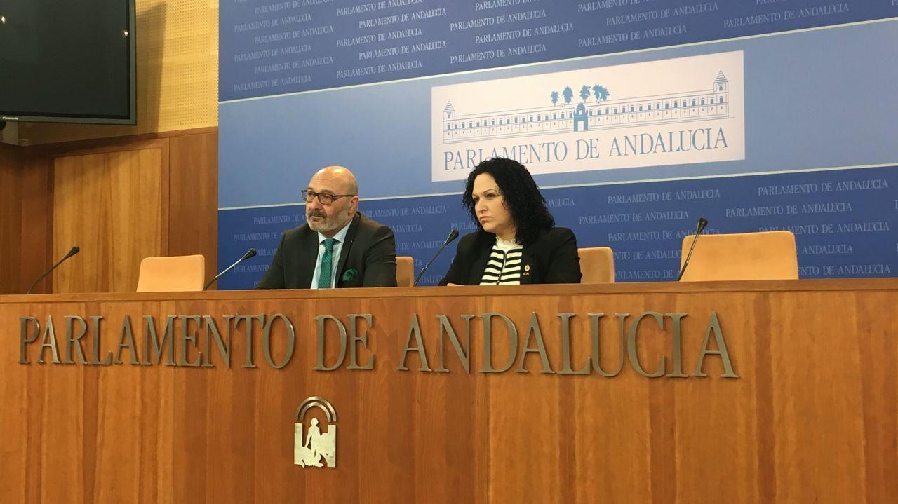 Los parlamentarios de Vox en Andalucía Alejandro Hernández y Luz Belinda Rodríguez, en una imagen de archivo
