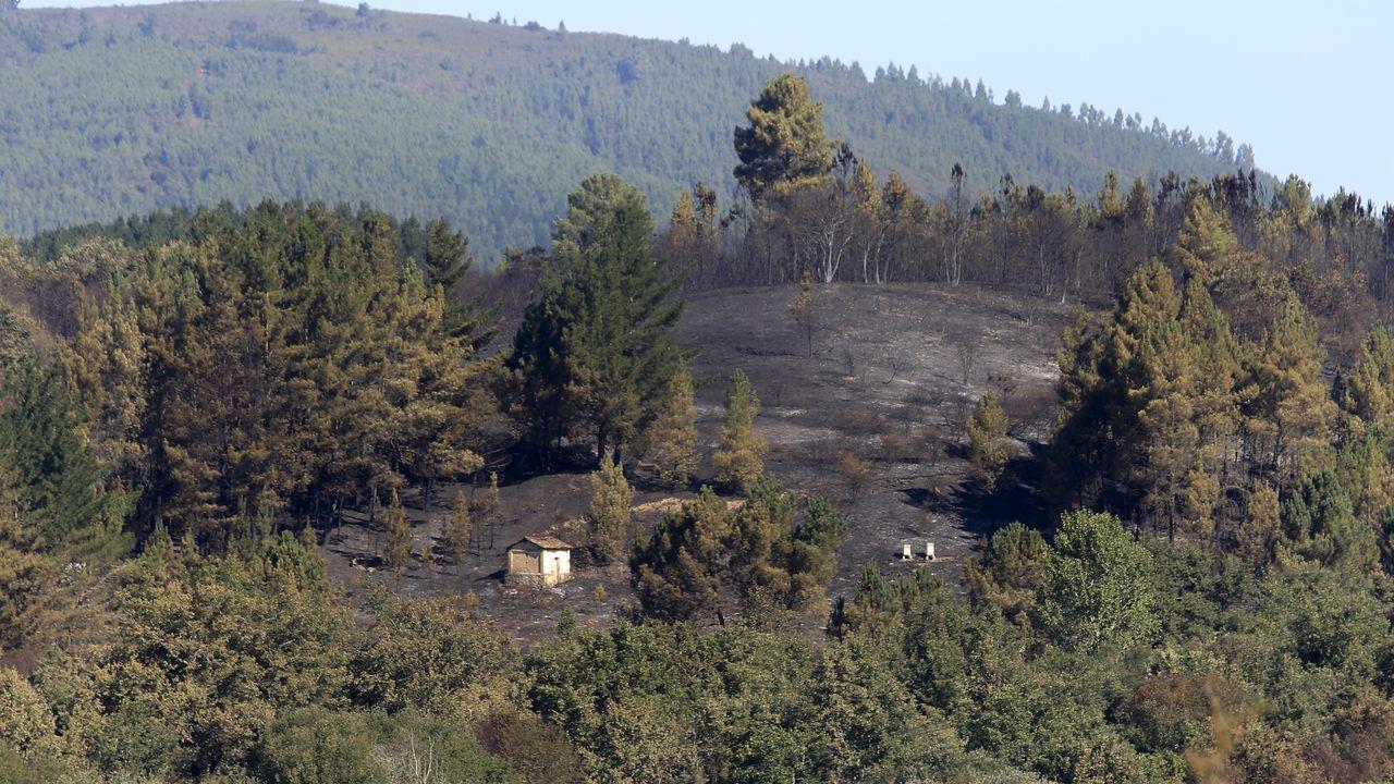 Rastros del fuego entre Seoane y Tor