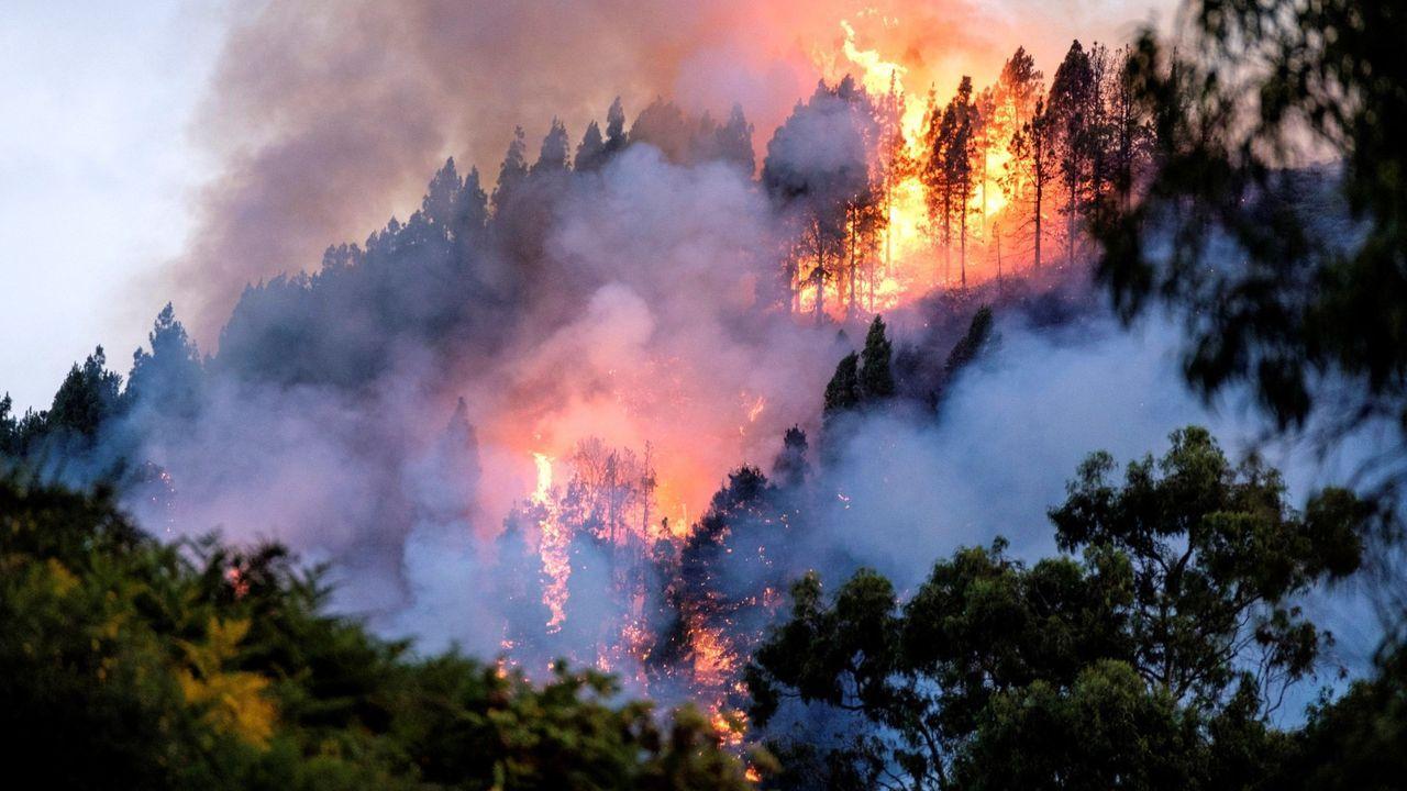Balsas de lodos desbordan cerca del nacimiento de los ríos Mandeo y Tambre.Incendio en el municipio grancanario de Valleseco