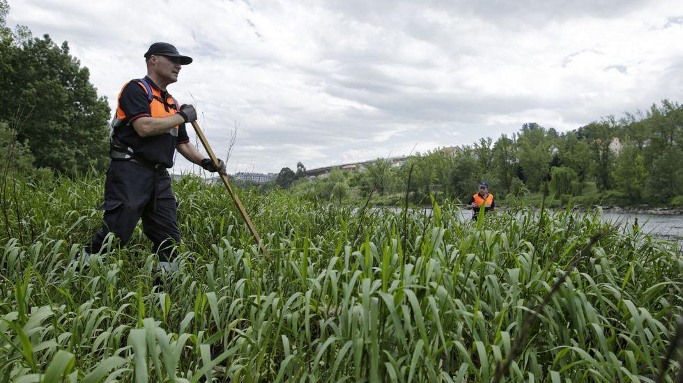 Pese a que el nivel del agua se bajó hasta una cota de 30 centímetros no se encontraron pistas de Socorro Pérez.
