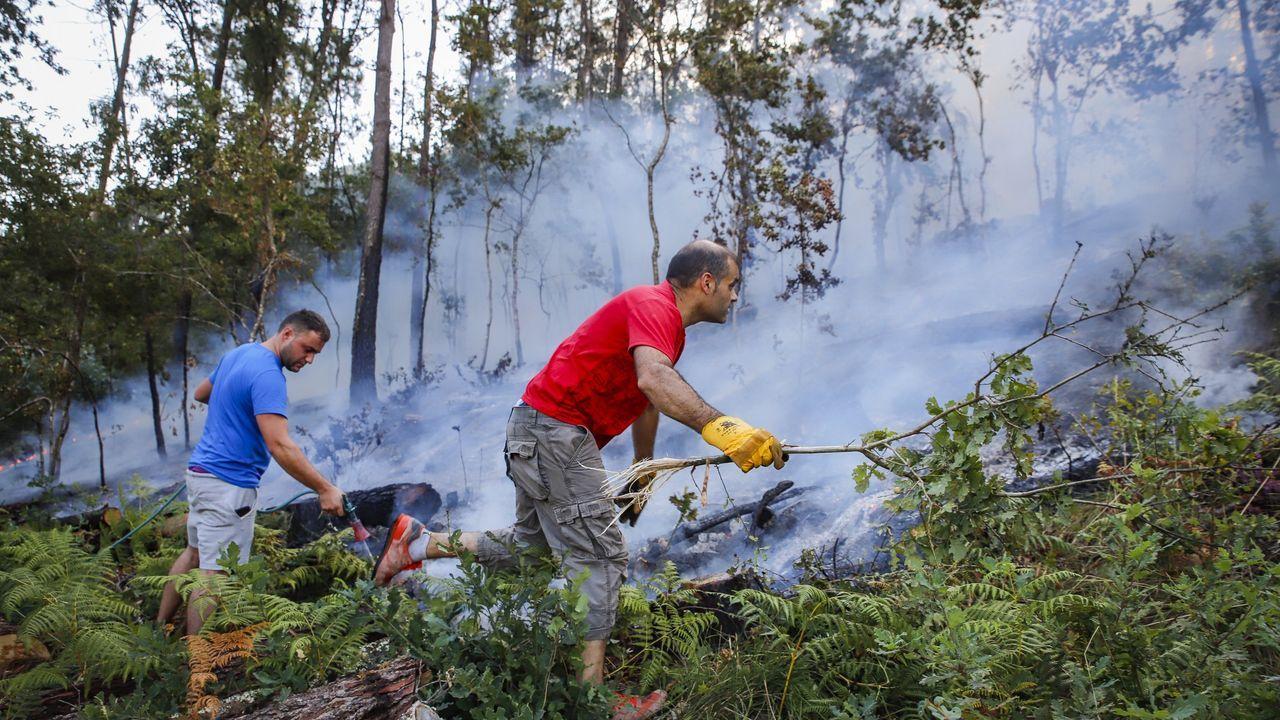 Barbanza se adelanta al verano, ¡mira cómo estaban las playas!.El último incendio en Tállara calcinó unas 60 hectáreas el verano pasado