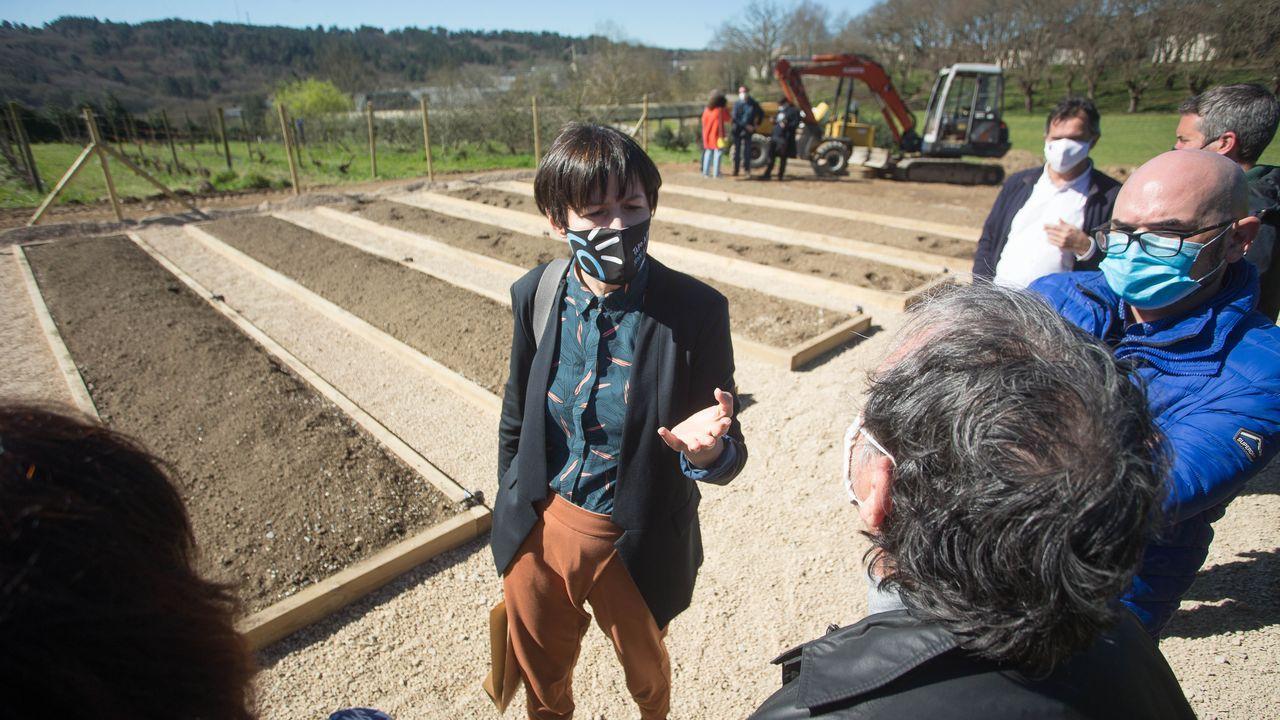 Pontón visitó este miércoles los huertos urbanos de la Escola Politécnica Superior de Enxeñaría de Lugo