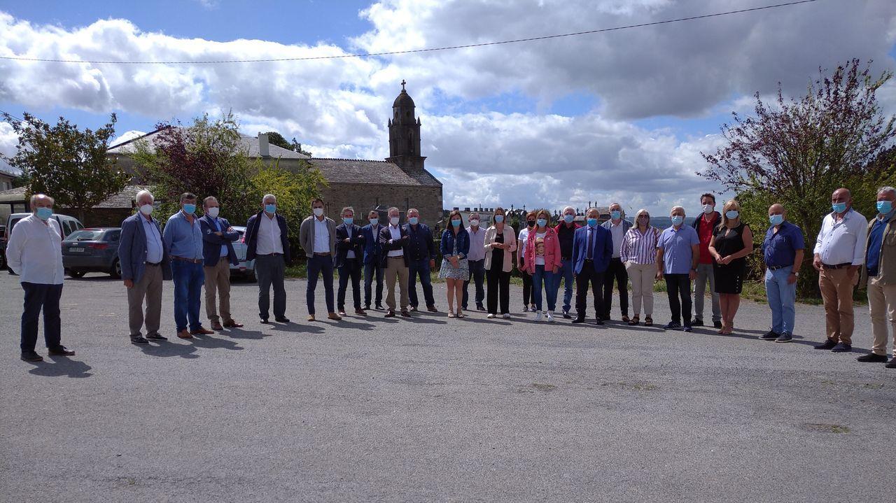 Alcalde e cargos do PSOE de Lugo reclamaron un plan de dixitalización no rural lucense