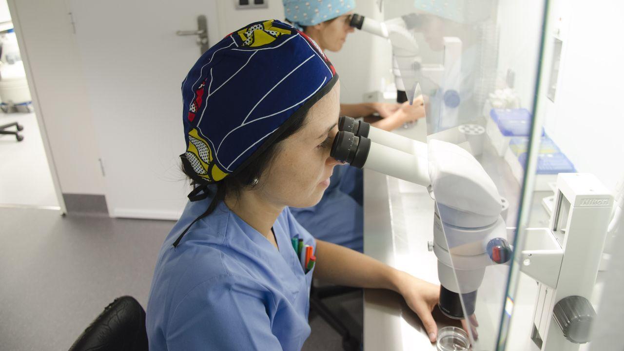 Laboratorio de la Unidad de Reproducción Asistida del Hospital Quirón de A Coruña