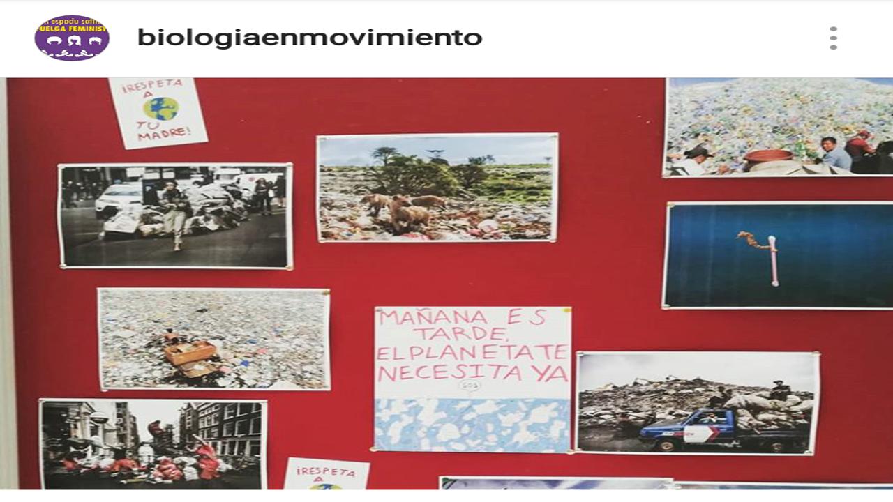 Mejores formas de reciclar.Universidad de Oviedo