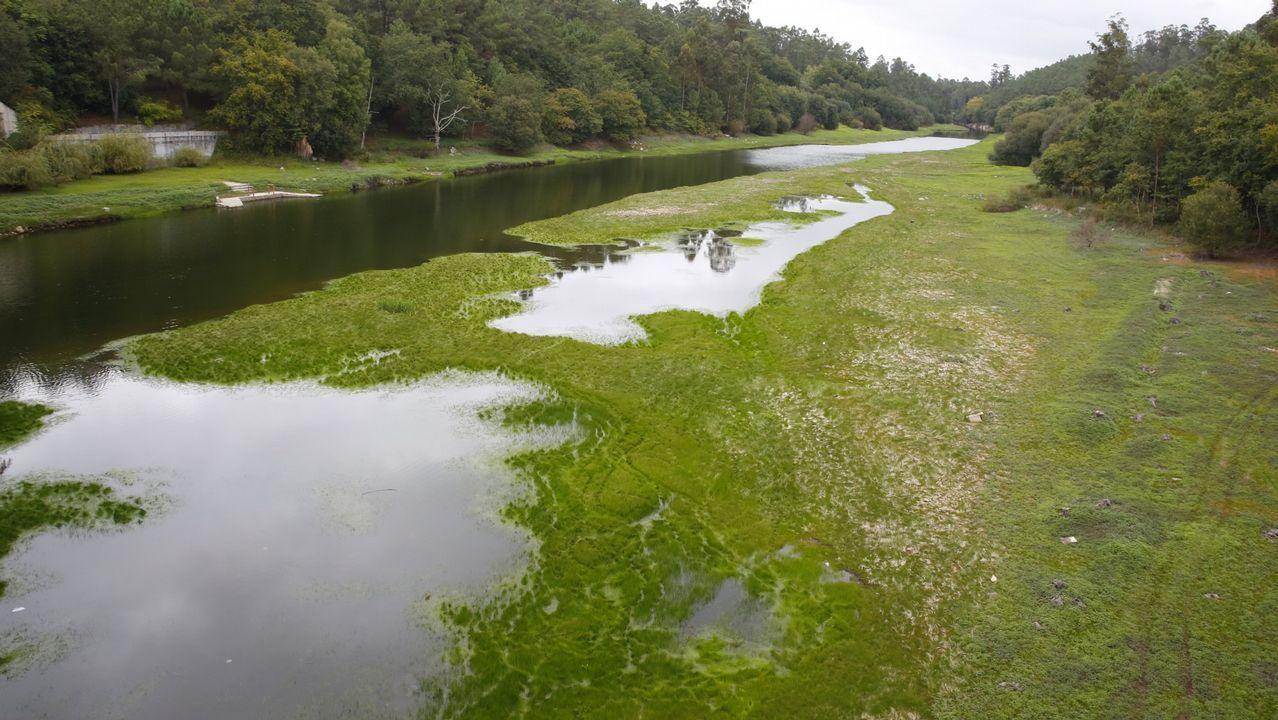 ¿Por qué el agua de este embalse se tiñe de verde?.El embalse de Belesar liberando agua para no llevar al limite de seguridad, en una imagen de archivo