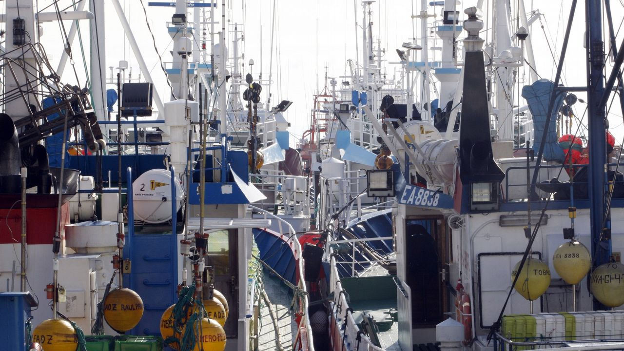 A estas alturas del año, la flota pesquera dispone de cuota para la captura de jurel y merluza