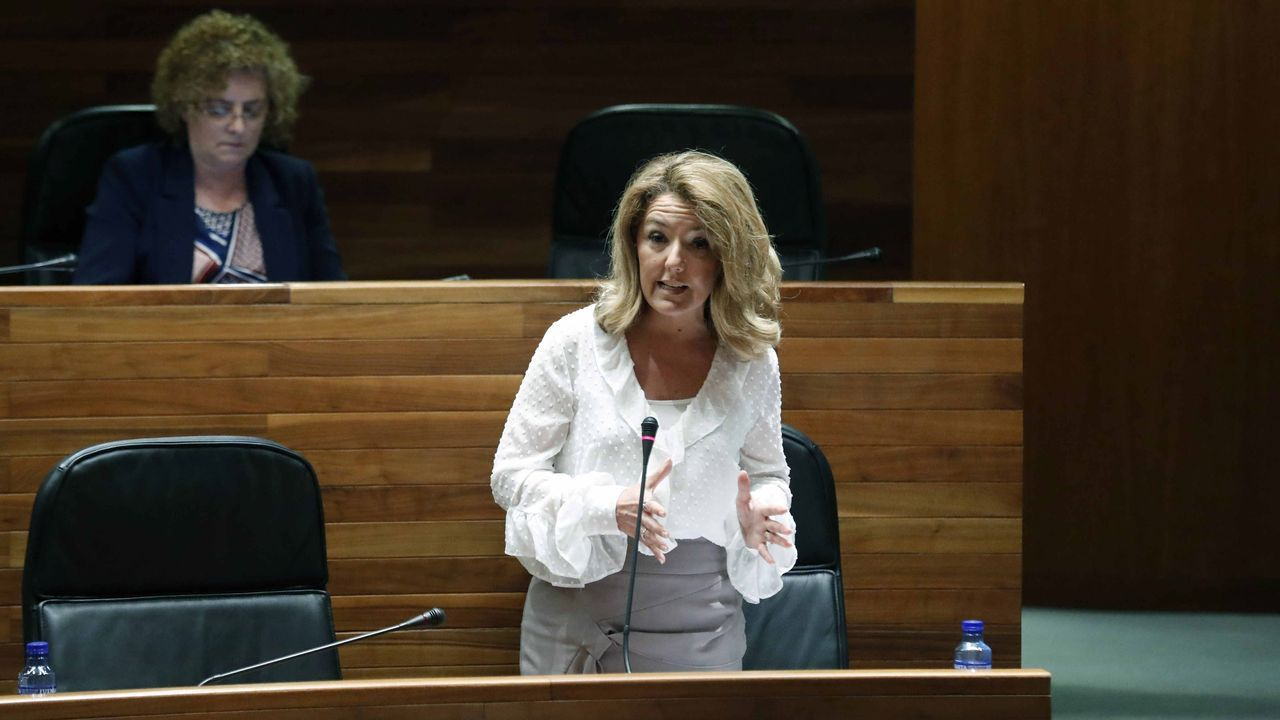 La portavoz del PP, Teresa Mallada, durante el pleno