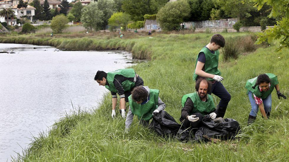 Estudiantes vigueses recogen 90 kilos de residuos en la Xunqueira do Lagares