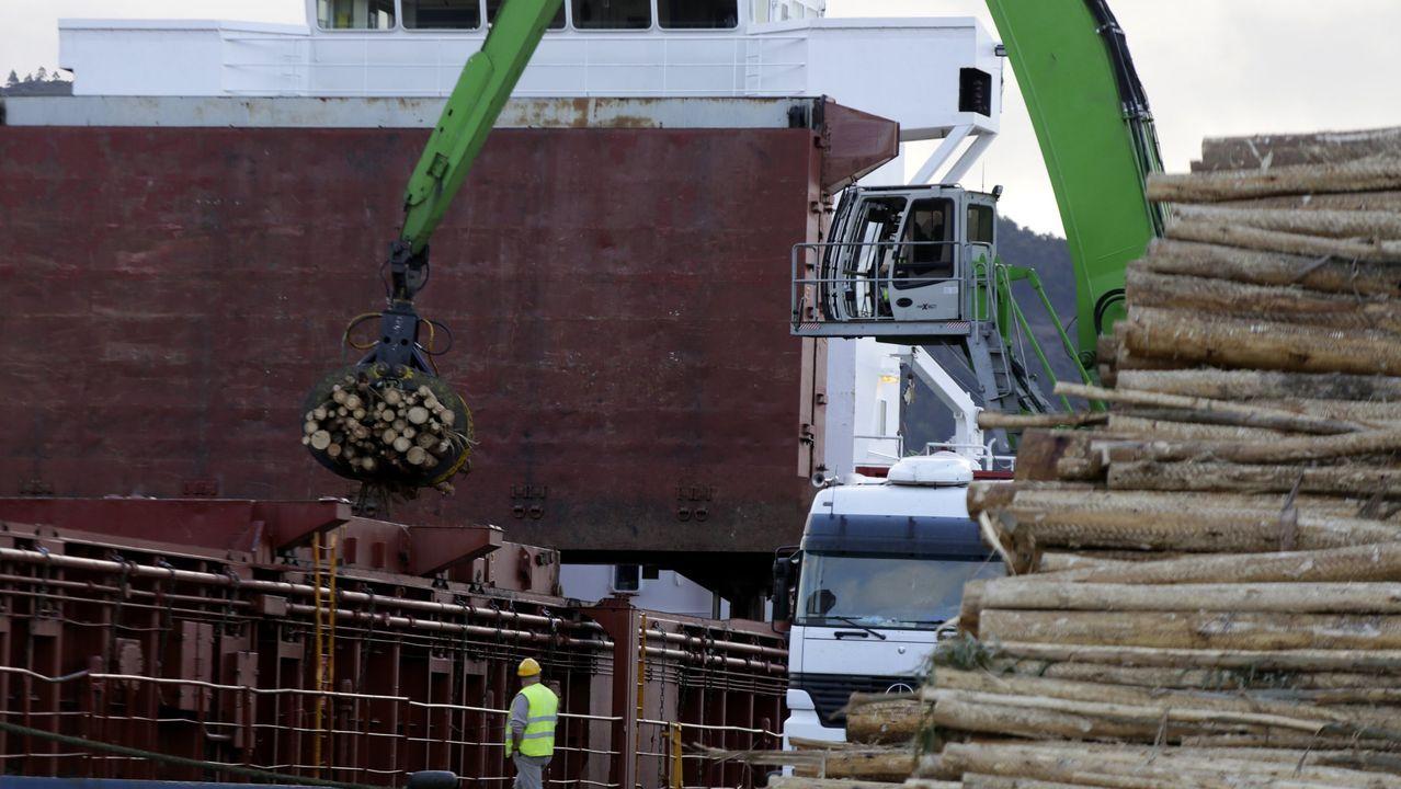Marea lila en Ferrol.La explanada dará servicio a los operadores de madera