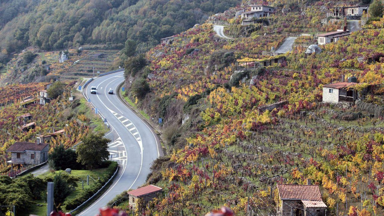 Los baches de la autovía Vigo-O Porriño persisten en las curvas de Tameiga.El corredor Monforte-Lalín, a su paso por la Ribeira Sacra