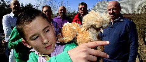 Más de ochenta personas acudieron al encuentro de la Asociación Coruñesa de Avicultura en la finca A Bouza de Meanos.
