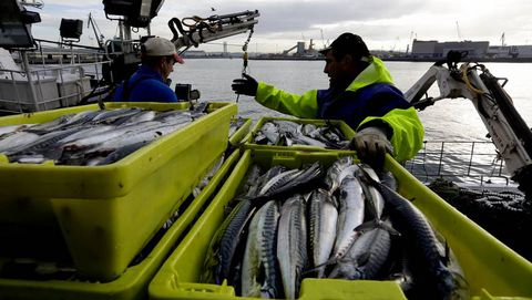 Las subvenciones que ofrece Pesca son para que las asociaciones defiendan los intereses de sus asociados, como estos pescadores, en una foto de archivo