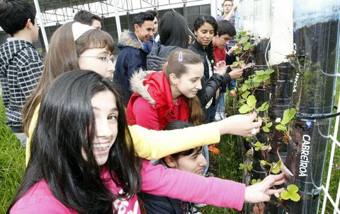Alumnos del IES Alfoz-Valadouro cuidando esta semana las fresas que plantaron en botellas de plástico, sistema de huerto vertical.