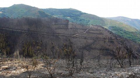 Las zonas próximas a la aldea de A Balsa fueron las más afectadas en el incendio de Navia