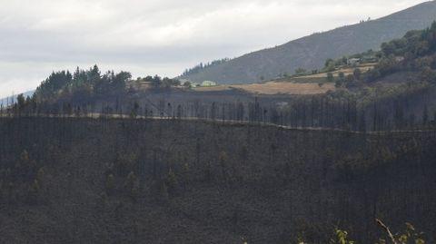 La aldea de A Balsa se salvó milagrosamente de ser pasto de las llamas