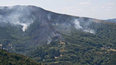 Las llamas arrasaron, en la zona de Bruicedo, 28 hectáreas según datos de la Xunta