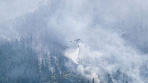 Los medios aéreos fueron vitales para la pronta extinción del incendio