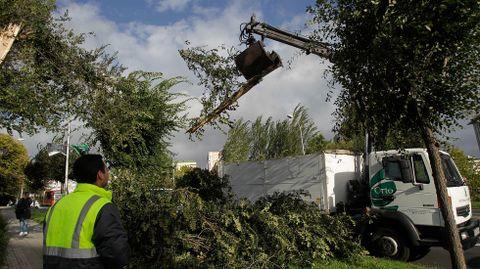 Retirando ramas caídas en A Coruña.