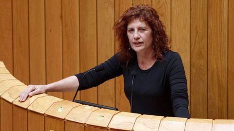 Consuelo Martínez, diputada del grupo mixo.