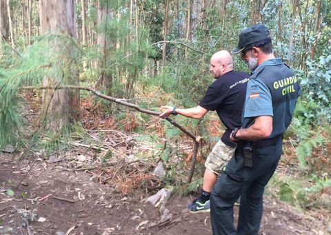 La Guardia Civil ha asumido, junto con la Policía Autonómica, la investigación de estas trampas.