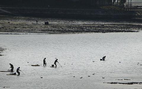 Una docena de mariscadores en la ría de O Burgo, a plena luz del día. Imagen de archivo