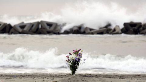 Flores en la playa de Arahama.