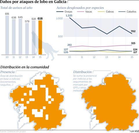 Daños por ataques de lobo en Galicia