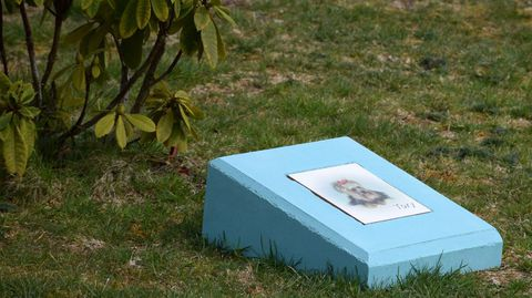 Finca en Soandres, A Laracha, donde se depositan cenizas de fallecidos, también de mascotas