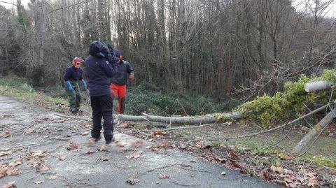 Destrozos por el temporal en Lorbé
