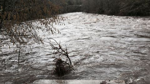 El Deza subió su nivel en Merza, Vila de Cruces, 80 centímetros desde ayer a mediodía.