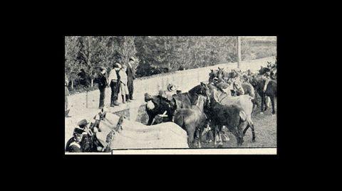 Caballerías empleadas para acarrear las piezas de artillería en su llegada a Bóveda