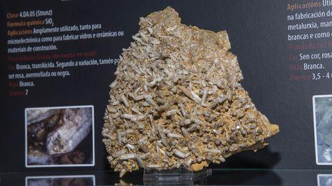 Una muestra de cuarzo lechoso de Vilarbacú en la colección mineralógica del museo