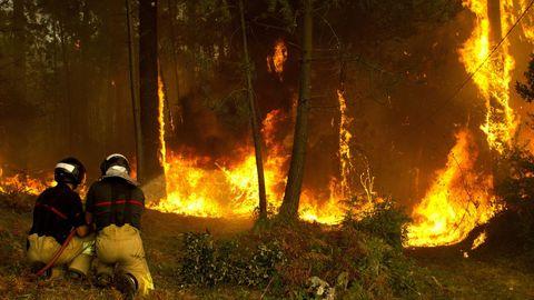 Operarios del sevicio de extinción de incendios trabajan en la zona de Zamanes, Vigo