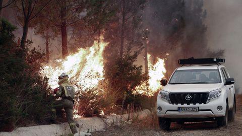 Incendio declarado en los montes de San Fiz