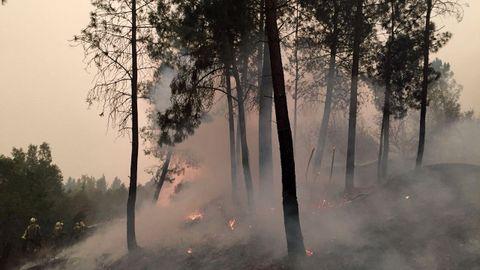 El fuego en Barxa, Chavaga