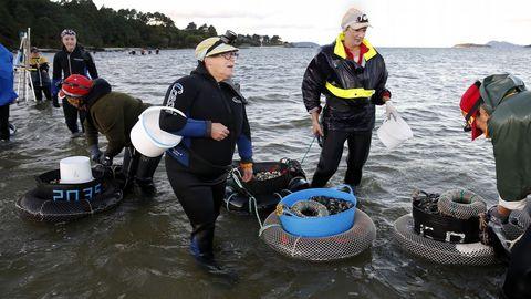 Los mariscadores de la Ria de Noia vuelven a trabajar