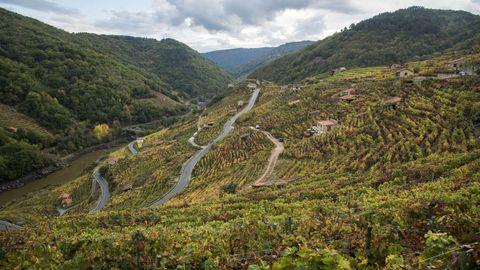 Los viñedos de San Fiz desde otra perspectiva