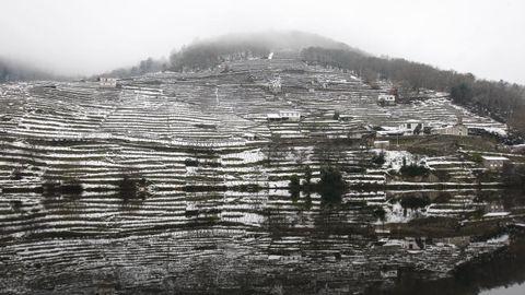 La nieve que deja el temporal cubre los bancales de las viñas de la Ribeira de Belesar.