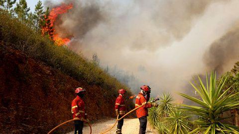 Las llamas han quemado más de 21.000 hectáreas