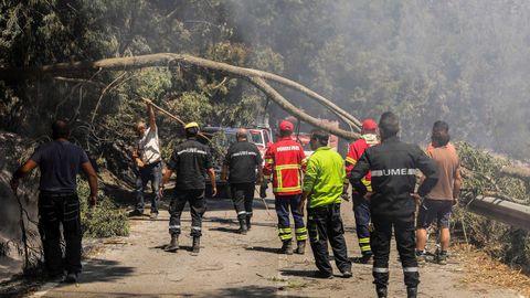 Bomberos y voluntarios despejan una carretera de árboles caídos durante el incendio
