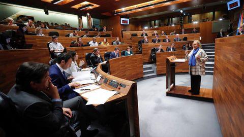 El pleno de la Junta General