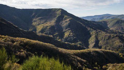 Una vista del monte Formigueiros, en cuya falda se encuentra la Devesa da Rogueira, el bosque más célebre de la sierra