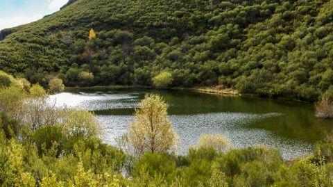 La laguna de A Lucenza