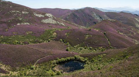 Paisaje desde el camino de la ruta de la laguna de A Lucenza