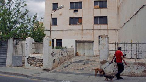 La plantación estaba en el interior de una fábrica abandonada en Elda
