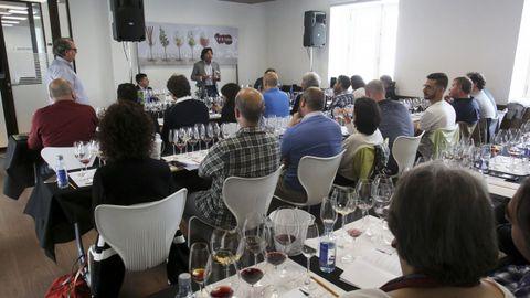 Fevino, primera cata: 8 vinos de 100 Puntos Parker, con Luis Gutiérrez